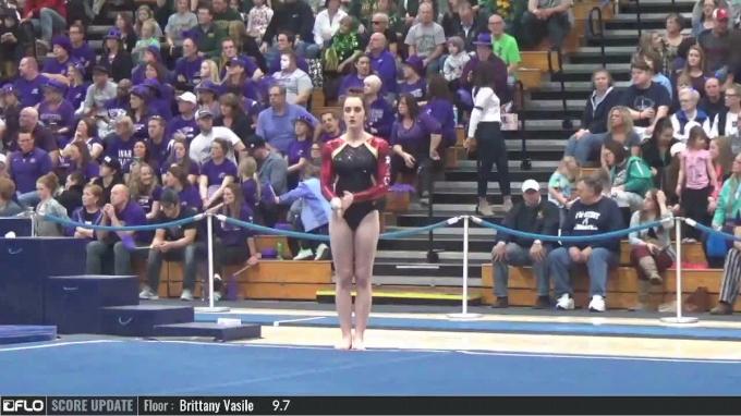 Allie Debiase - Floor, Rhode Island - 2017 NCGA Championships