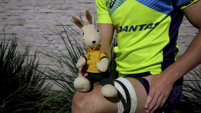 Wally The Wallaby May Be Australia's MVP