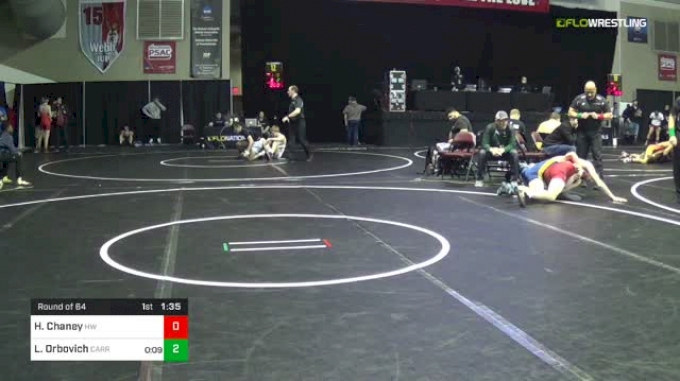 152 lbs Round Of 64 - Hunter Chaney, Harrison Wildcats vs LJ Orbovich, Carrick High School