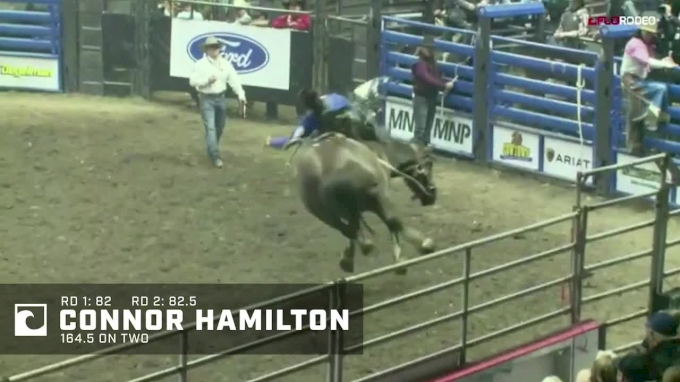 Highlights: See The Aggregate Winners From Canadian Western Agribition