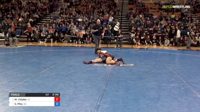 109 lbs Final - Maria Vidales, Emanuel College vs Cody Pfau, Emanuel College