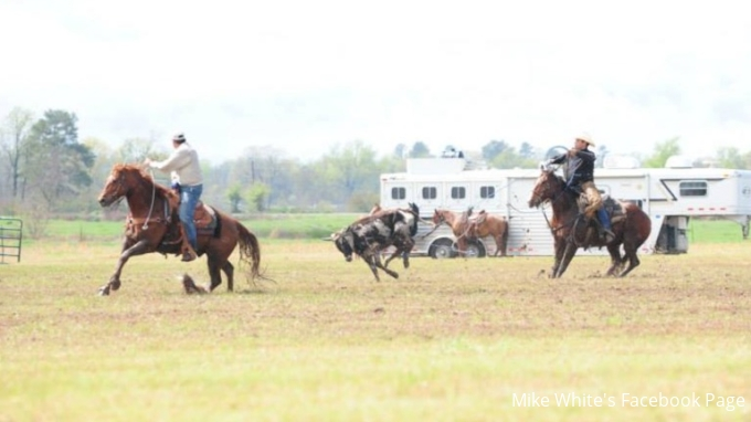 Mike White Pasture Roping
