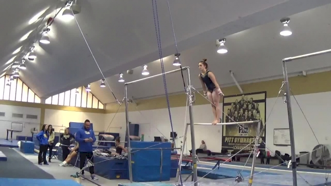 Haley Brechwald Bars