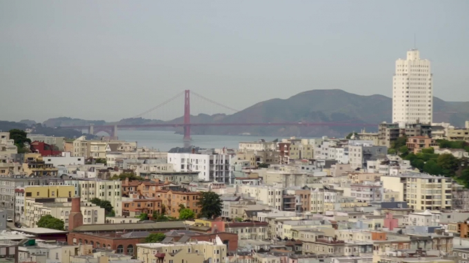 PRP Celebrates Rugby At Treasure Island