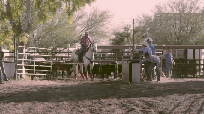 The American: Florence, Arizona Breakaway Roping Qualifier